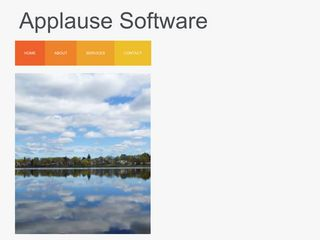 Applause TM Software, a Visual DataFlex Consultancy